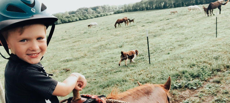 Rolling Hills Farm and Equine, LLC